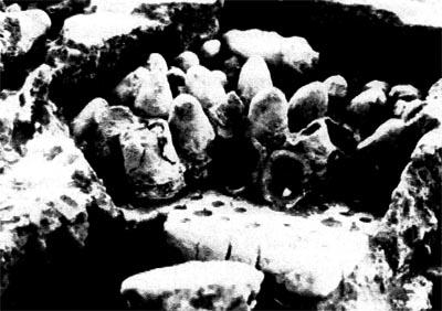 Ancient Zinc smelting furnaces found in Zawar, India