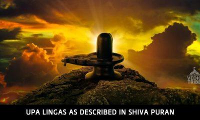Upa Lingas as Described in Shiva Puran