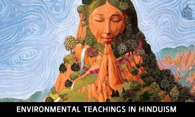 Environmental Teachings in Hinduism
