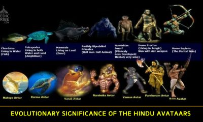 Evolutionary Significance of the Hindu Avataars