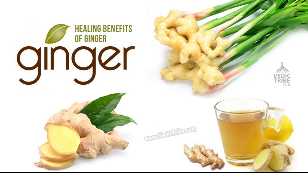 Healing benefits of Ginger